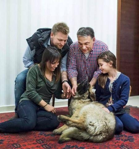 Az állatvédő (Fotó: Orbán Viktor -Facebook)