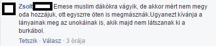 fidesz1