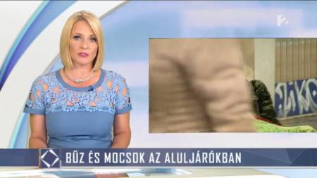 Fotó: TV2/Tények