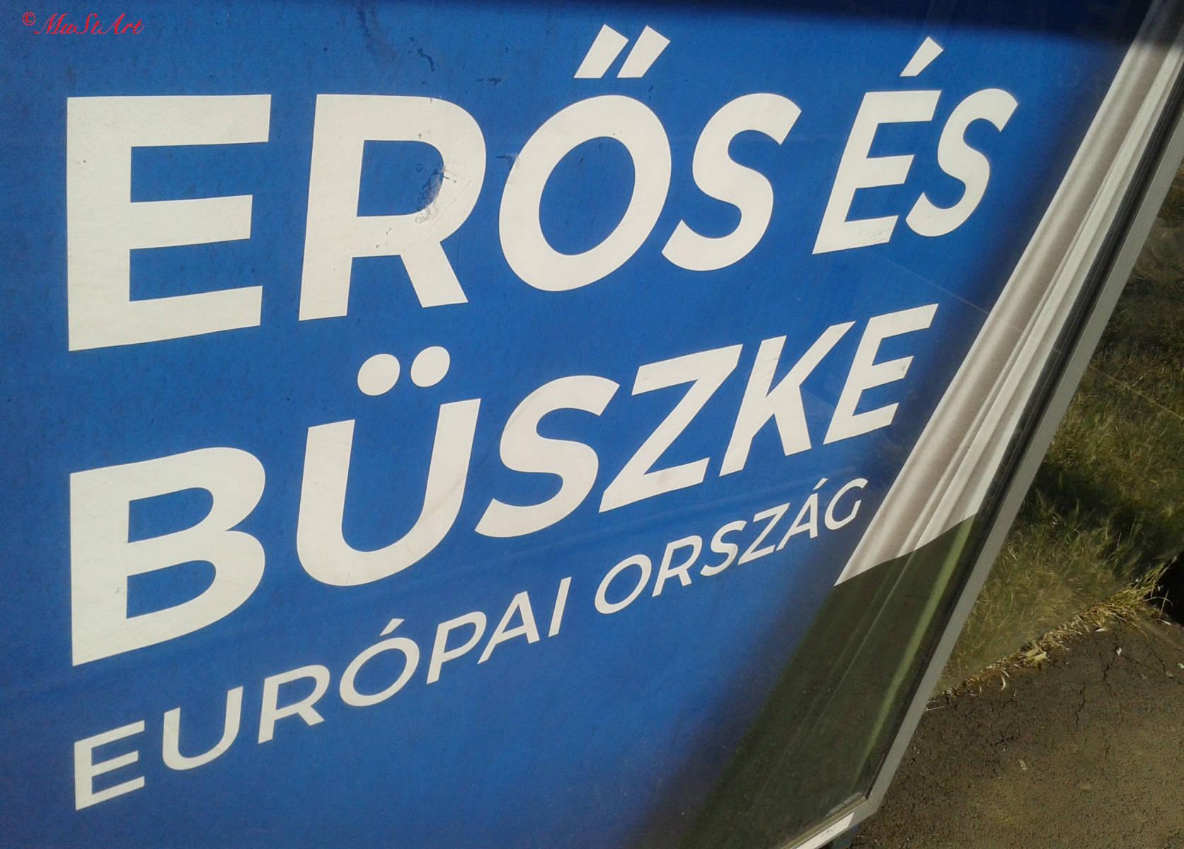 buszke-20170612_080845_cr_2m