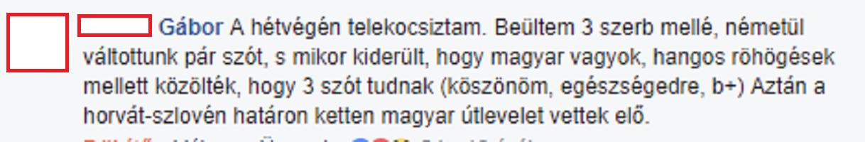 Vajon a magyarul nem beszélő, magyar állampolgársággal rendelkező szerbek erőforrást, vagy tehertételt jelentenek a kormány számára?