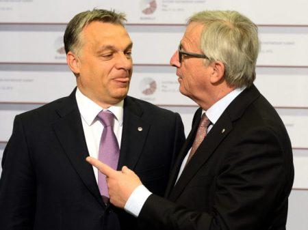 Fotó: Janek Skarzynski/AFP via Getty Images