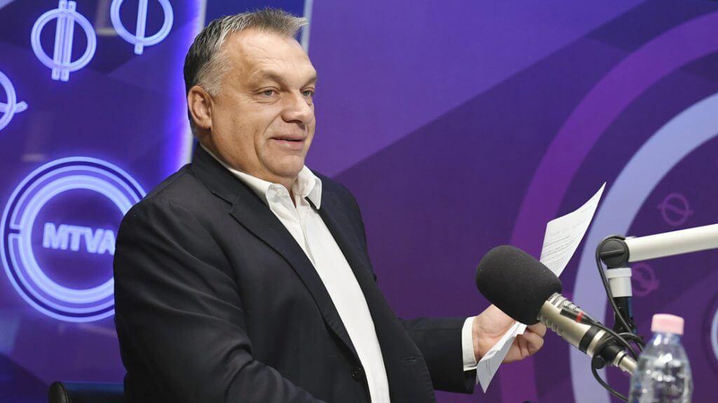 A bokorban hálót szövő nyulak szakértője igét hirdet a Kossuth rádióban (Fotó: Koszticsák Szilárd/MTI/MTVA)
